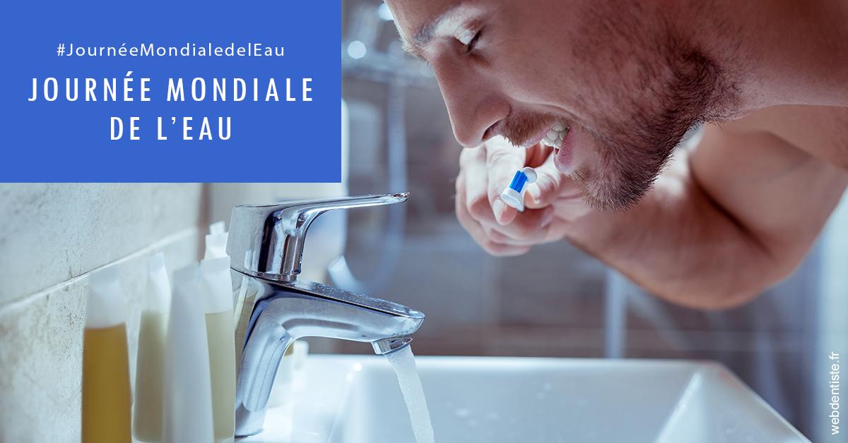 https://www.orthodontie-bruxelles-gilkens.be/Journée de l'eau 2