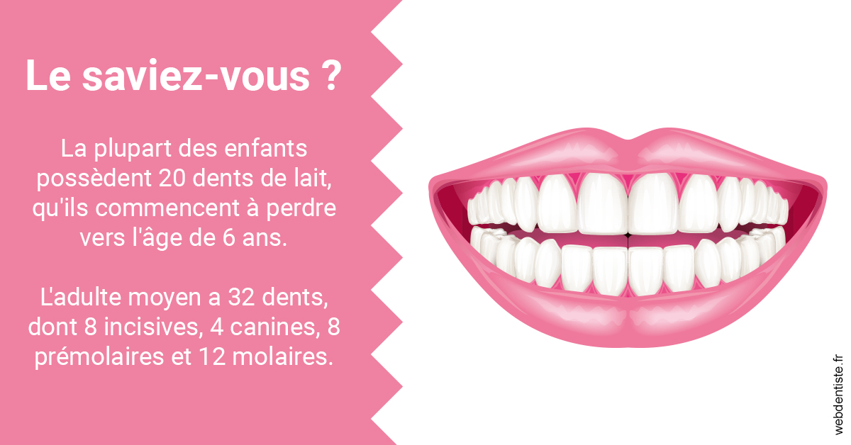 https://www.orthodontie-bruxelles-gilkens.be/Dents de lait 2
